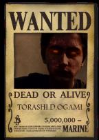 torashi-D-ogami