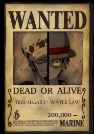 trafalgar-D-water-law